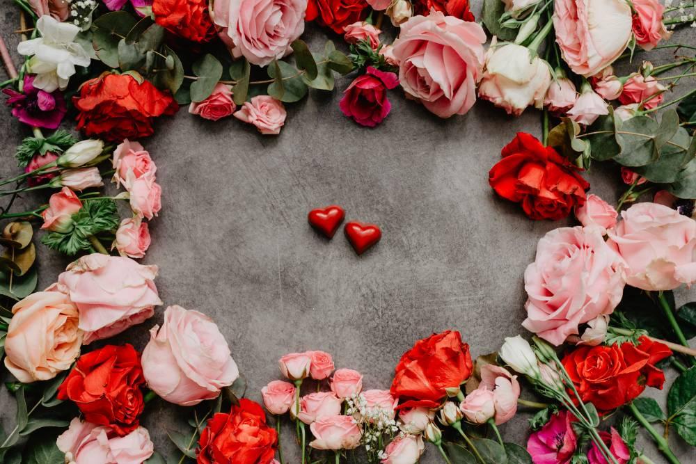 róże, róża
