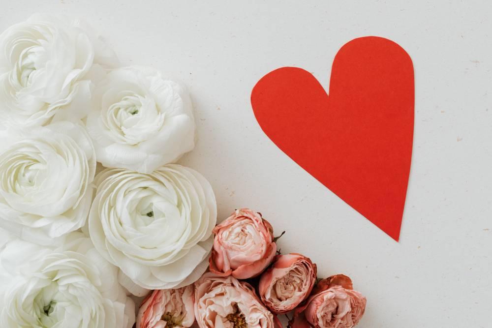 róża, za co ją kochać