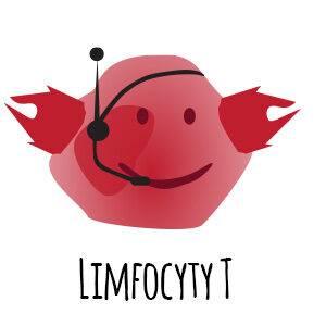limfocyty T