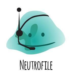 neutrofile - odporność